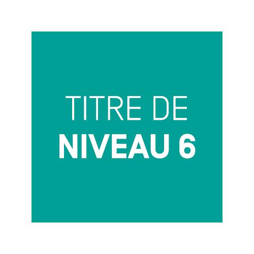 TITRE DE NIVEAU 6